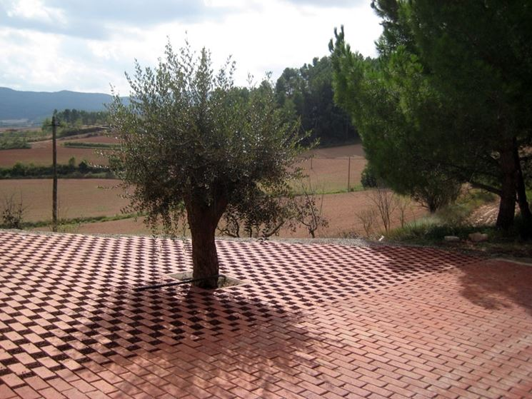 Pavimentazione Drenante Da Giardino : Pavimentazione drenante piastrelle per casa che cos è una