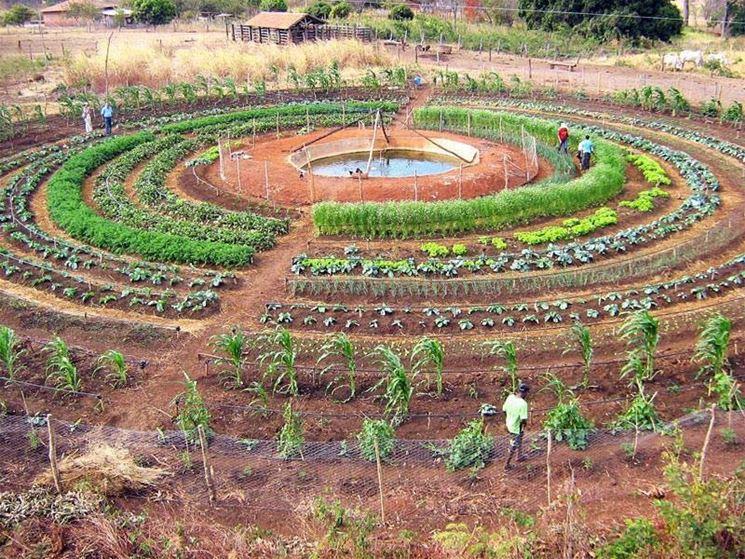 Orto sinergico a forma di labirinto