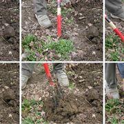 Preparazione del terreno per l'orto