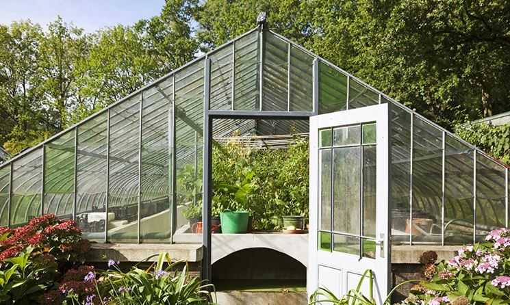 Serra per ortaggi in vetro