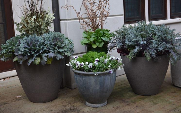 I vasi per piante vasi per piante modelli vasi for Alberelli da esterno