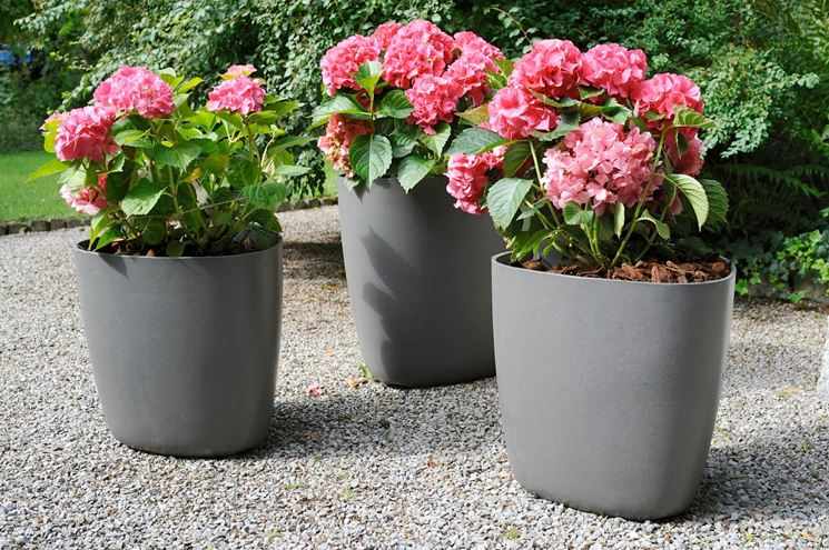 Vasi da giardino vasi per piante tipologie di vasi per for Vasi da giardino in plastica