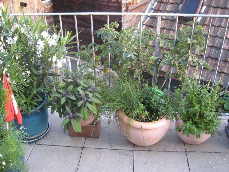 Vasi da terrazzo vasi per piante tipologie vaso for Piante da terrazzo soleggiato