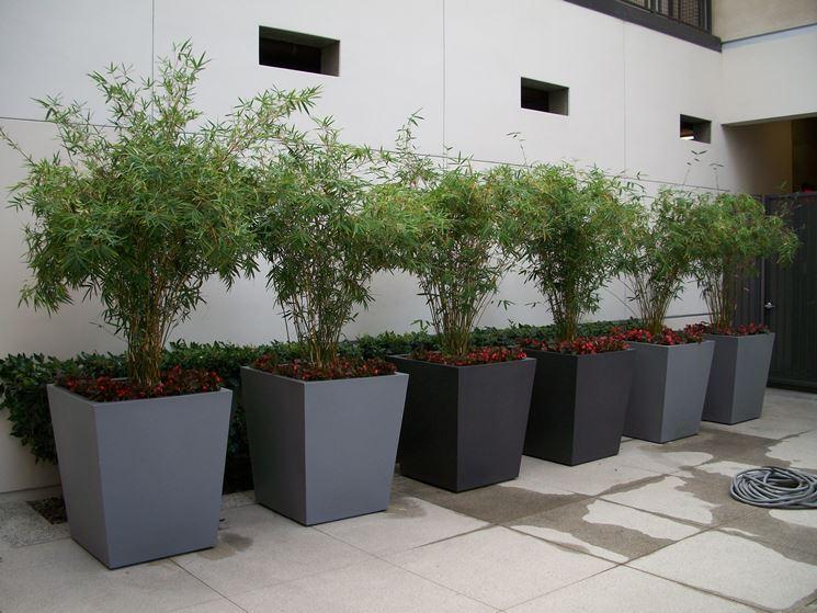 vasi fiori vasi per piante modelli vaso