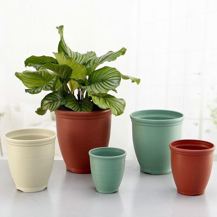 Vasi In Plastica Per Piante Grandi : Vasi per piante in plastica