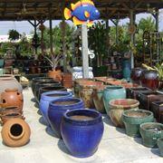 Vasta scelta di vasi per piante