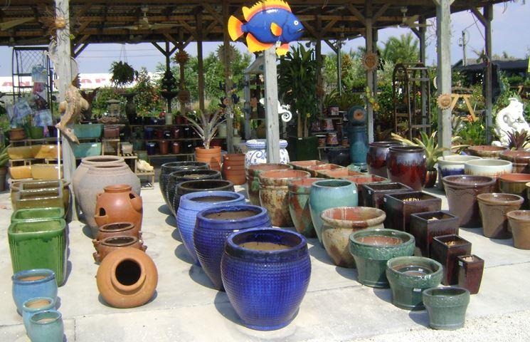 Vasi Di Plastica Colorati Per Piante: Migliori vasi per piante grasse.