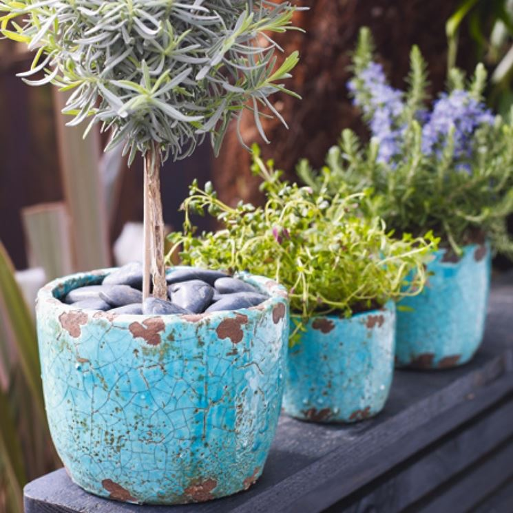 Vasi vasi per piante vasi per piante for Vasi per piante